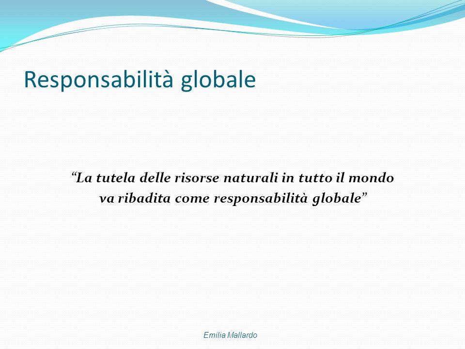 """Responsabilità globale """"La tutela delle risorse naturali in tutto il mondo va ribadita come responsabilità globale"""" Emilia Mallardo"""
