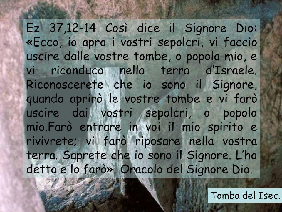 Ez 37,12-14 Così dice il Signore Dio: «Ecco, io apro i vostri sepolcri, vi faccio uscire dalle vostre tombe, o popolo mio, e vi riconduco nella terra