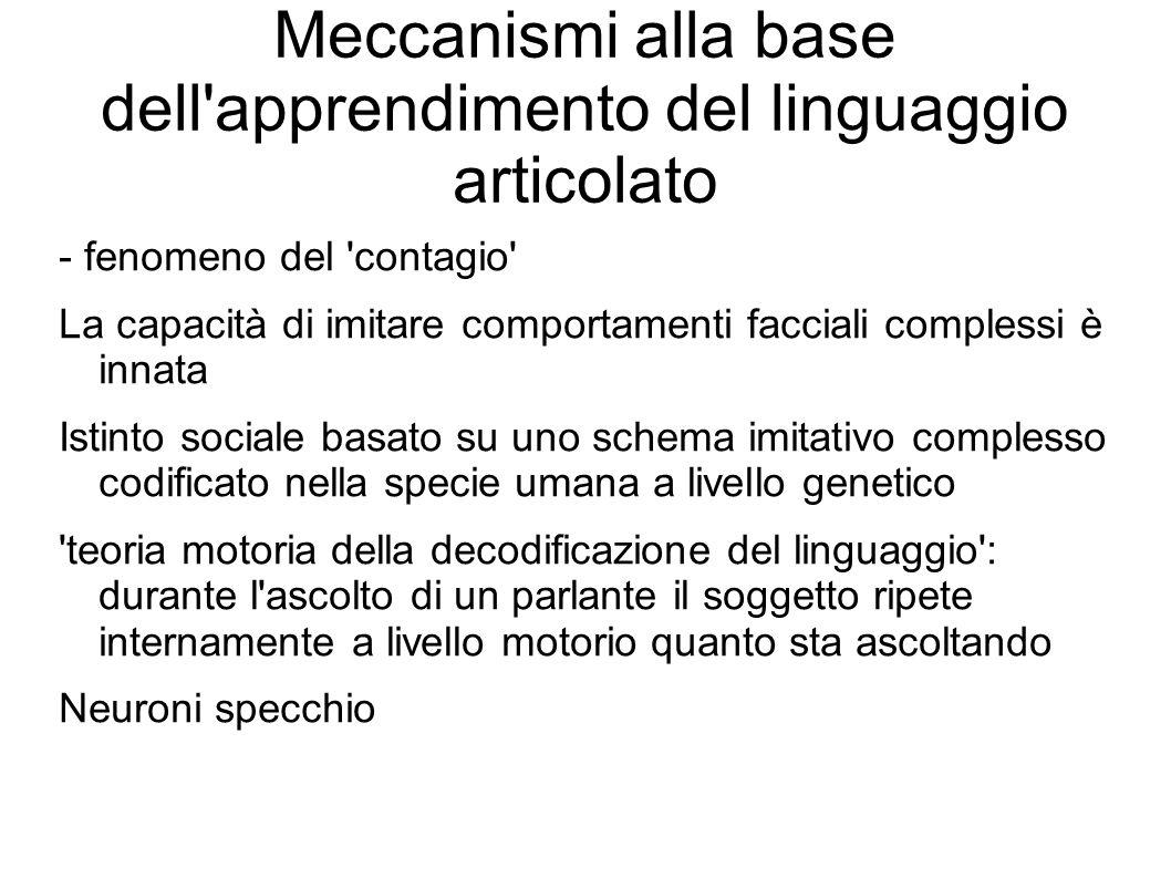 Meccanismi alla base dell'apprendimento del linguaggio articolato - fenomeno del 'contagio' La capacità di imitare comportamenti facciali complessi è