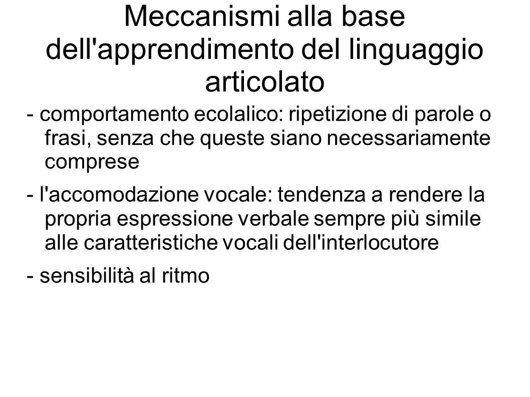 Meccanismi alla base dell'apprendimento del linguaggio articolato - comportamento ecolalico: ripetizione di parole o frasi, senza che queste siano nec