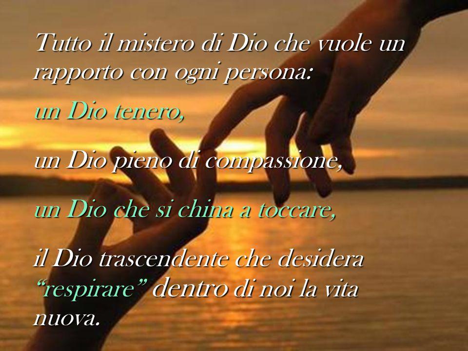 Tutto il mistero di Dio che vuole un rapporto con ogni persona: un Dio tenero, un Dio pieno di compassione, un Dio che si china a toccare, il Dio tras