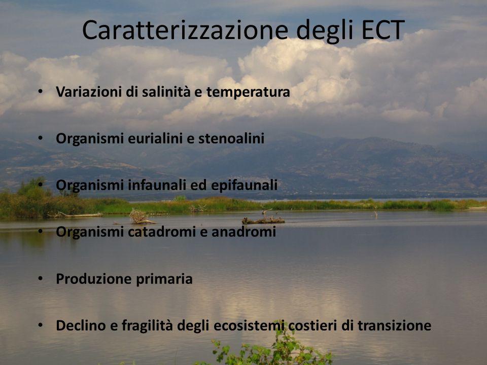 Caratterizzazione degli ECT Variazioni di salinità e temperatura Organismi eurialini e stenoalini Organismi infaunali ed epifaunali Organismi catadromi e anadromi Produzione primaria Declino e fragilità degli ecosistemi costieri di transizione