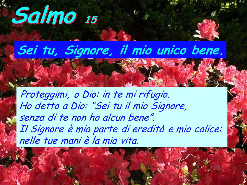 Salmo 15 Sei tu, Signore, il mio unico bene.Proteggimi, o Dio: in te mi rifugio.