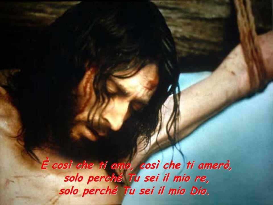 È così che ti amo, così che ti amerò, solo perché Tu sei il mio re, solo perché Tu sei il mio Dio.
