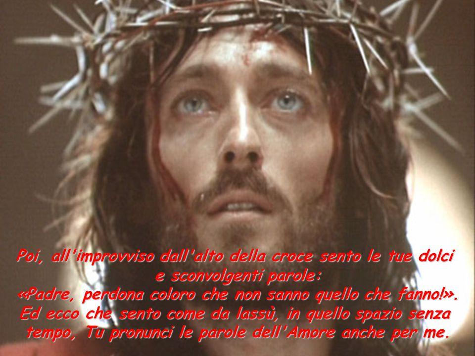 Poi, all'improvviso dall'alto della croce sento le tue dolci e sconvolgenti parole: «Padre, perdona coloro che non sanno quello che fanno!». Ed ecco c