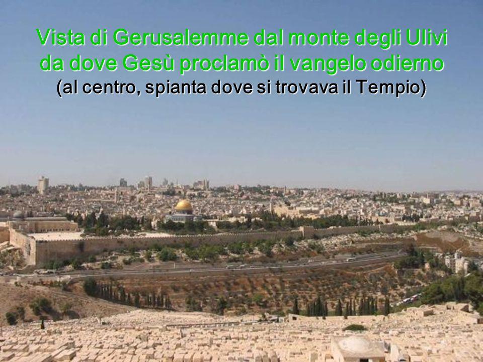 Vista di Gerusalemme dal monte degli Ulivi da dove Gesù proclamò il vangelo odierno (al centro, spianta dove si trovava il Tempio)