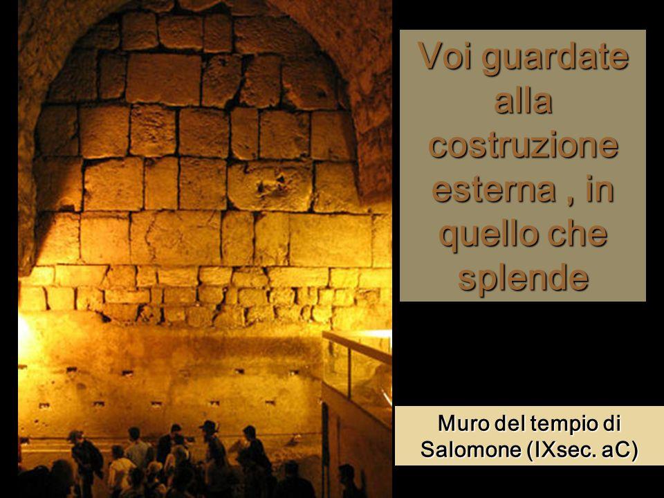 Voi guardate alla costruzione esterna, in quello che splende Muro del tempio di Salomone (IXsec.