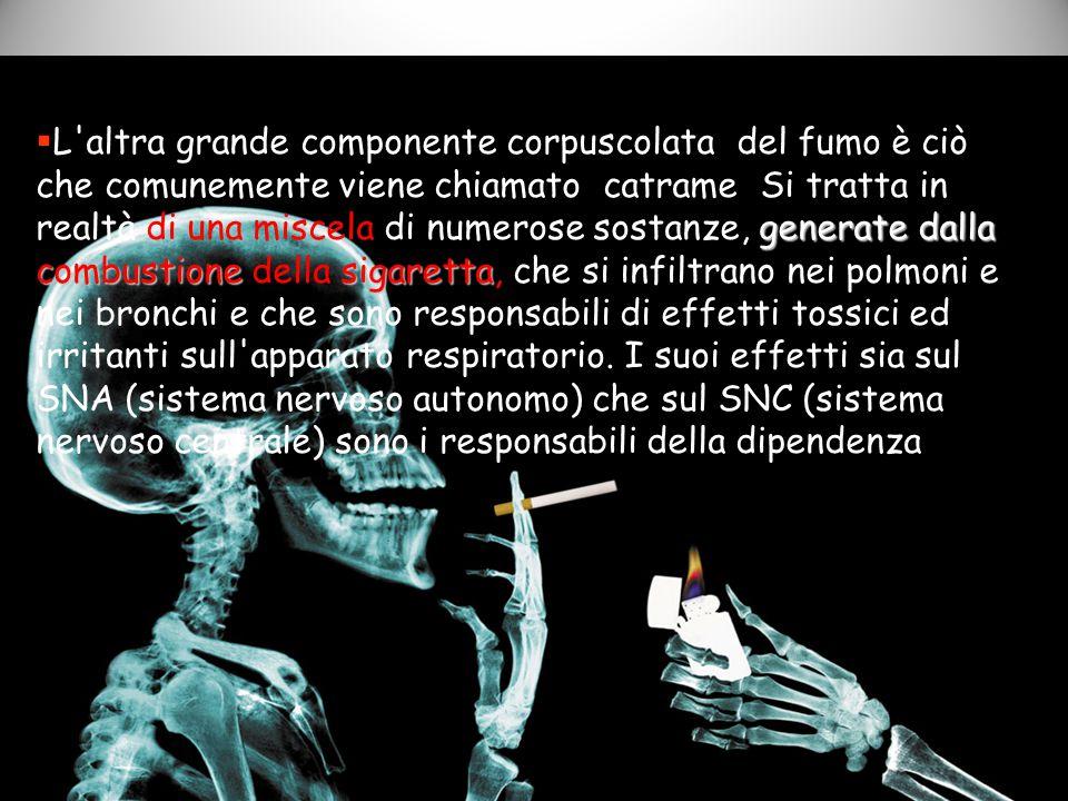 generate dalla combustione sigaretta  L'altra grande componente corpuscolata del fumo è ciò che comunemente viene chiamato catrame Si tratta in realt