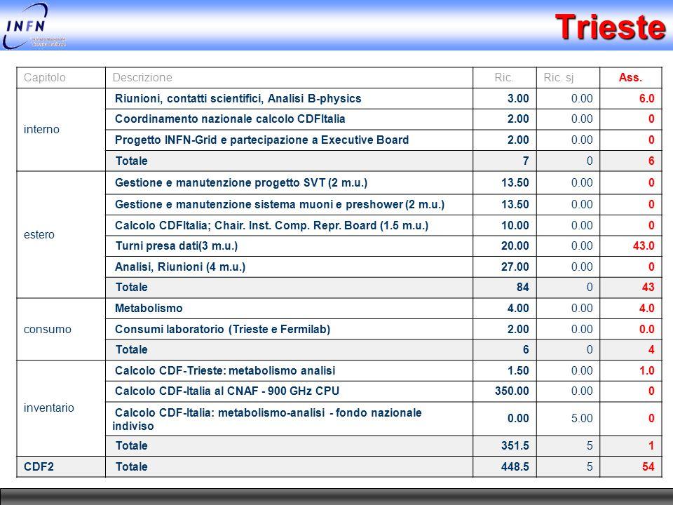 Trieste CapitoloDescrizioneRic.Ric. sjAss. interno Riunioni, contatti scientifici, Analisi B-physics3.000.006.0 Coordinamento nazionale calcolo CDFIta