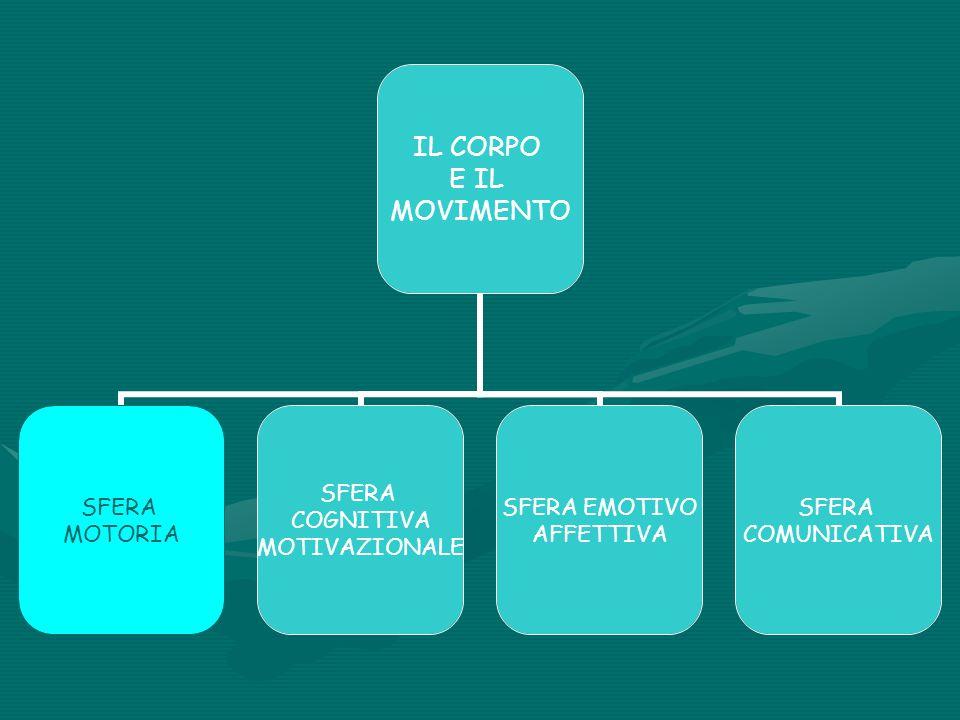 IL CORPO E IL MOVIMENTO SFERA MOTORIA SFERA COGNITIVA MOTIVAZIONALE SFERA EMOTIVO AFFETTIVA SFERA COMUNICATIVA