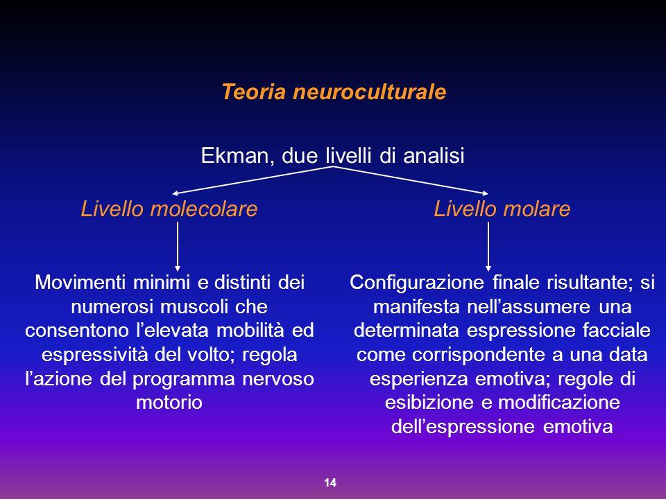 14 Teoria neuroculturale Ekman, due livelli di analisi Livello molecolare Movimenti minimi e distinti dei numerosi muscoli che consentono l'elevata mo