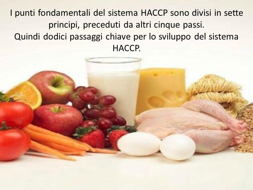 I punti fondamentali del sistema HACCP sono divisi in sette principi, preceduti da altri cinque passi. Quindi dodici passaggi chiave per lo sviluppo d