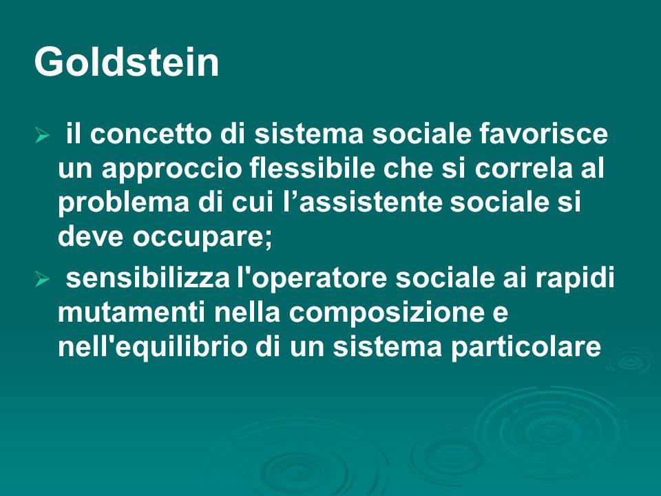 Goldstein  il concetto di sistema sociale favorisce un approccio flessibile che si correla al problema di cui l'assistente sociale si deve occupare;  sensibilizza l operatore sociale ai rapidi mutamenti nella composizione e nell equilibrio di un sistema particolare
