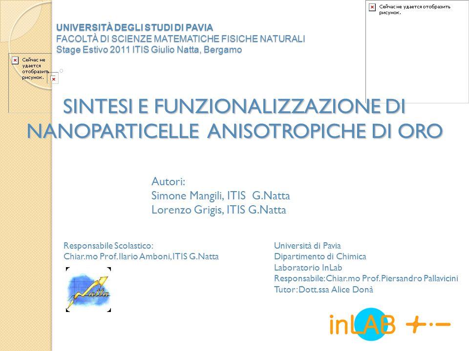 Introduzione LE NANOTECNOLOGIE