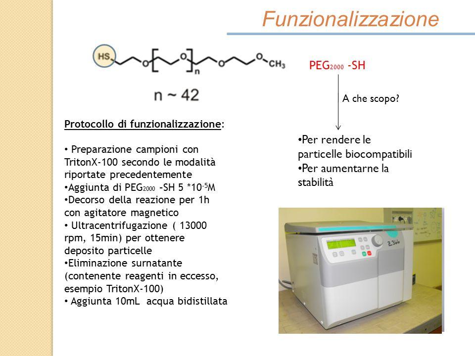 Funzionalizzazione PEG 2000 -SH A che scopo? Per rendere le particelle biocompatibili Per aumentarne la stabilità Protocollo di funzionalizzazione: Pr