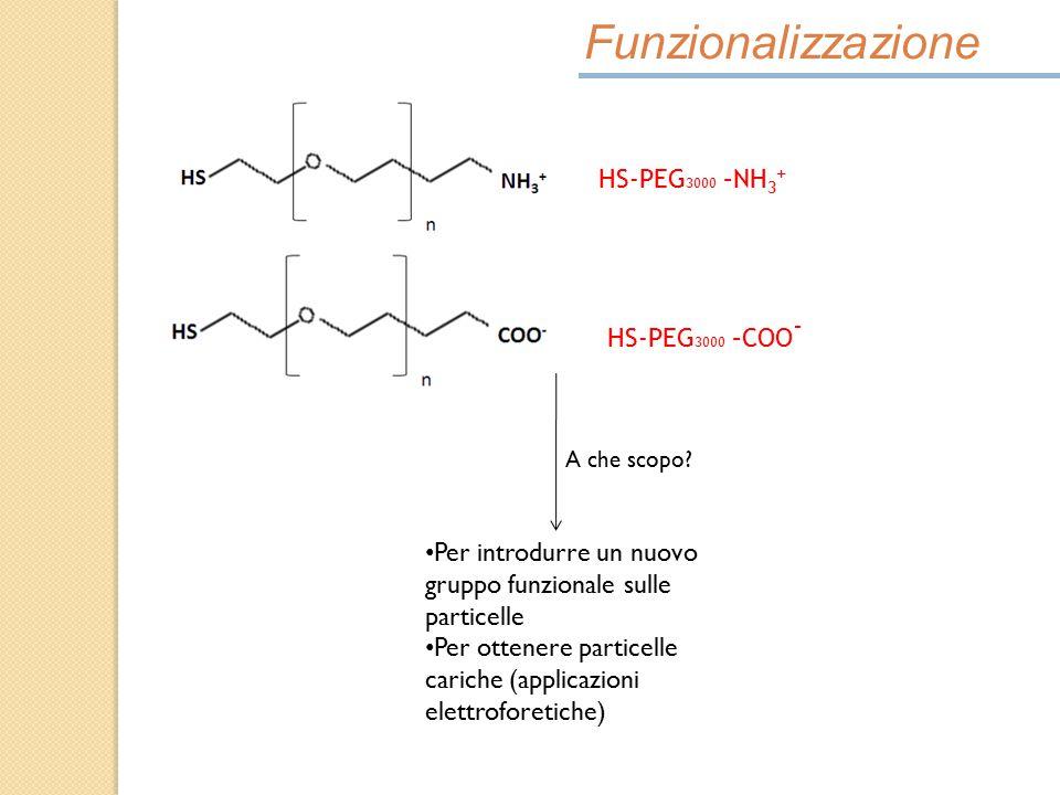 Funzionalizzazione HS-PEG 3000 –NH 3 + A che scopo? Per introdurre un nuovo gruppo funzionale sulle particelle Per ottenere particelle cariche (applic