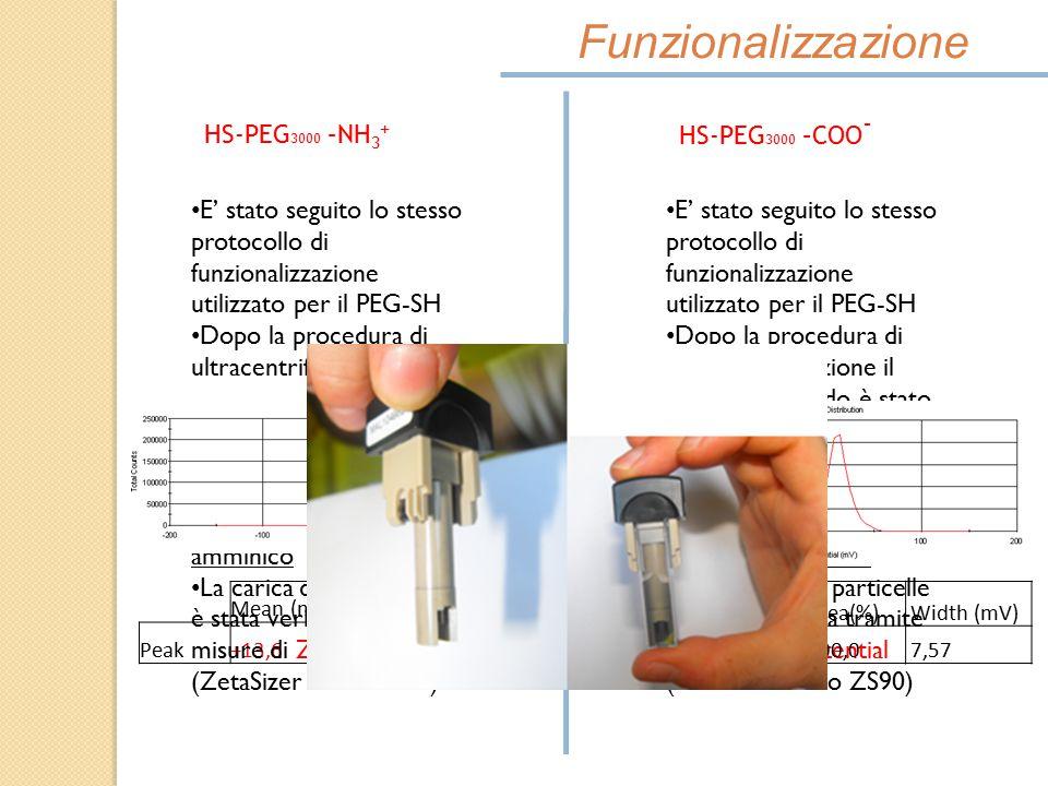 Mean (mV)Area(%)Width (mV) Peak+13,6100,011,9 Funzionalizzazione HS-PEG 3000 –NH 3 + HS-PEG 3000 –COO - E' stato seguito lo stesso protocollo di funzi