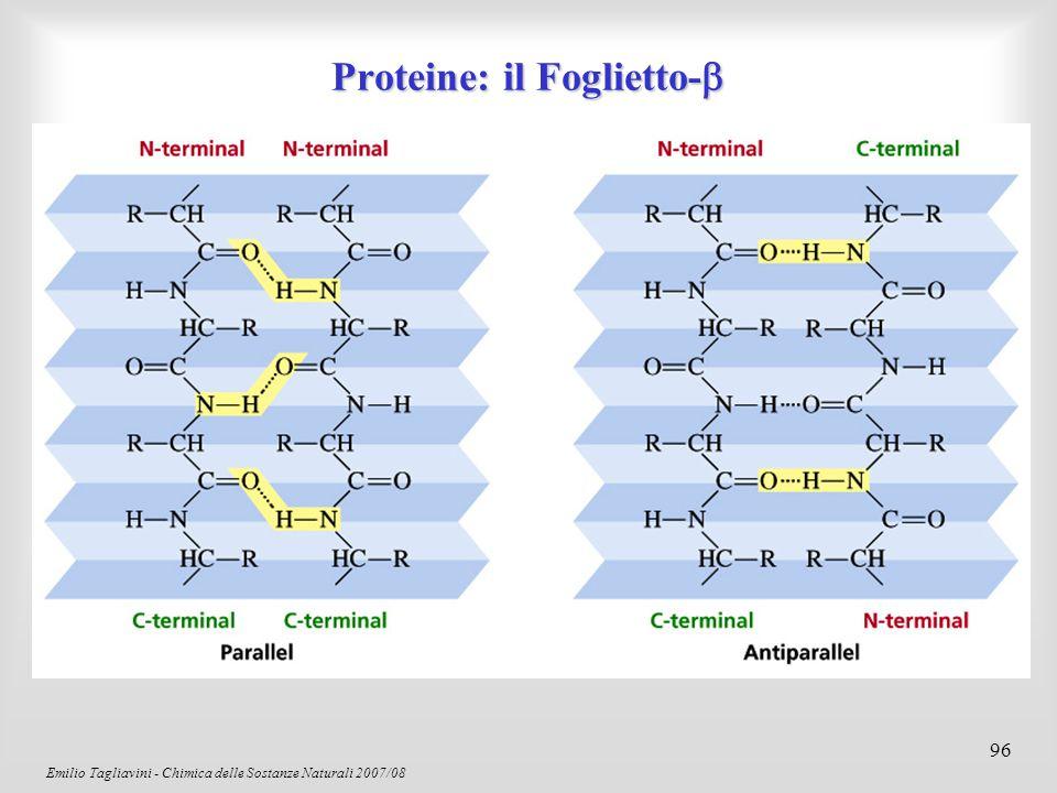 Emilio Tagliavini - Chimica delle Sostanze Naturali 2007/08 97 La Struttura Terziaria La struttura terziaria dipende dalla sequenza amminoacidica