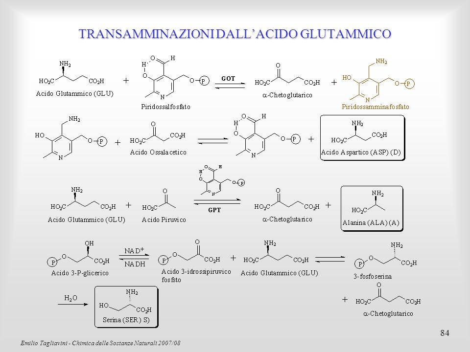 Emilio Tagliavini - Chimica delle Sostanze Naturali 2007/08 85 D-gliceraldeideL-gliceraldeide L-amminoacidoD-amminoacido Configurazione degli amminoacidi