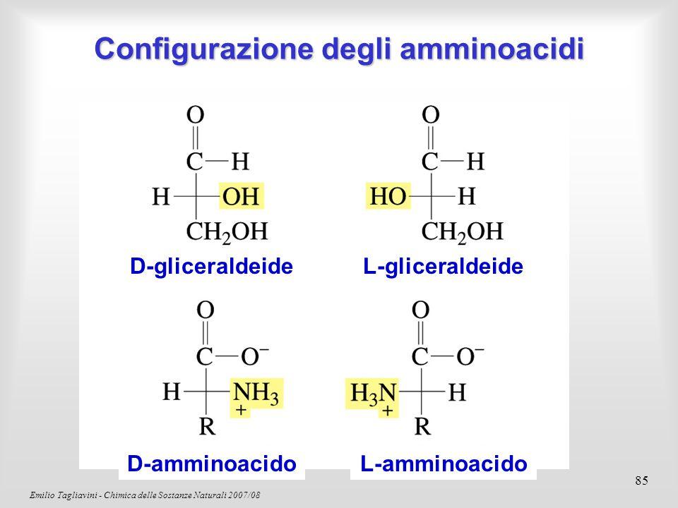 Emilio Tagliavini - Chimica delle Sostanze Naturali 2007/08 86 Un amminoacido non sarà mai presente nelle forma senza cariche Uno zwitterione Proprietà acido-base degli amminoacidi