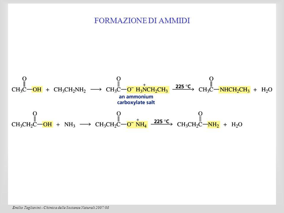 Emilio Tagliavini - Chimica delle Sostanze Naturali 2007/08 89 Carbonio  Configurazione trans Il legame peptidico