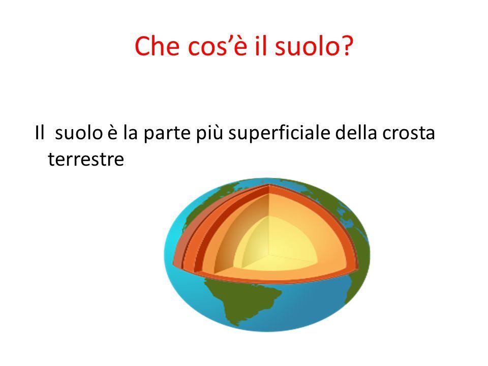 Che cos'è il suolo? Il suolo è la parte più superficiale della crosta terrestre