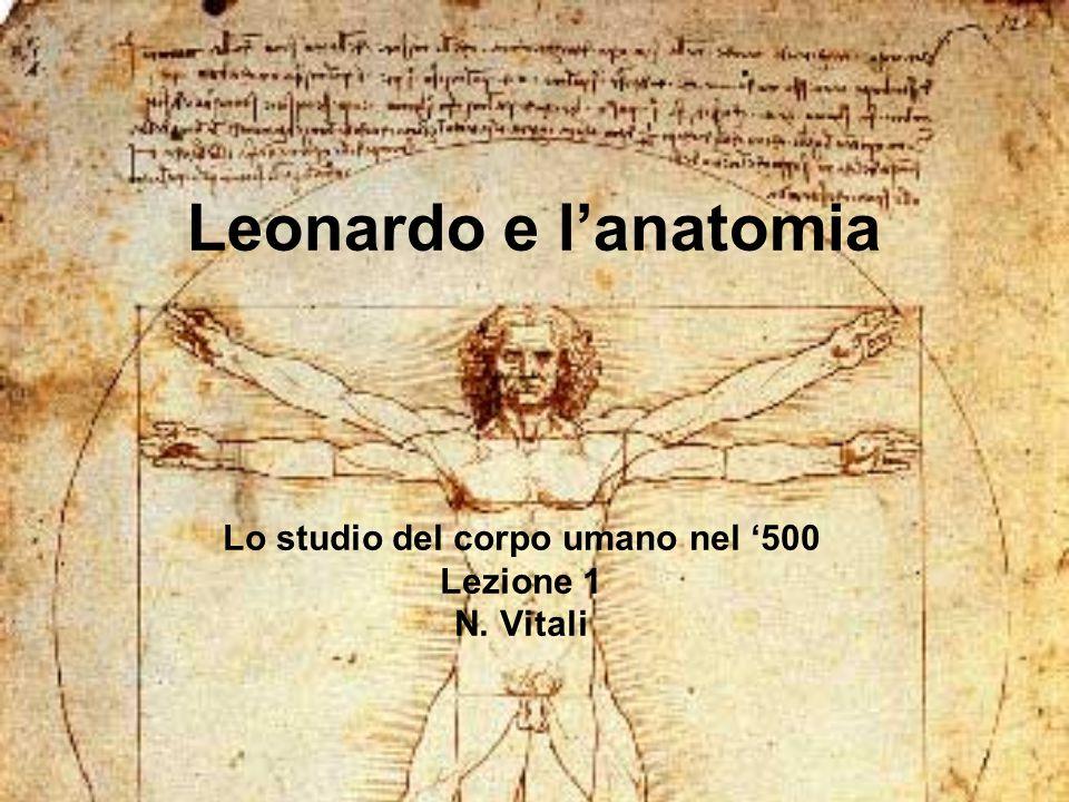 Leonardo e l'anatomia Lo studio del corpo umano nel '500 Lezione 1 N. Vitali