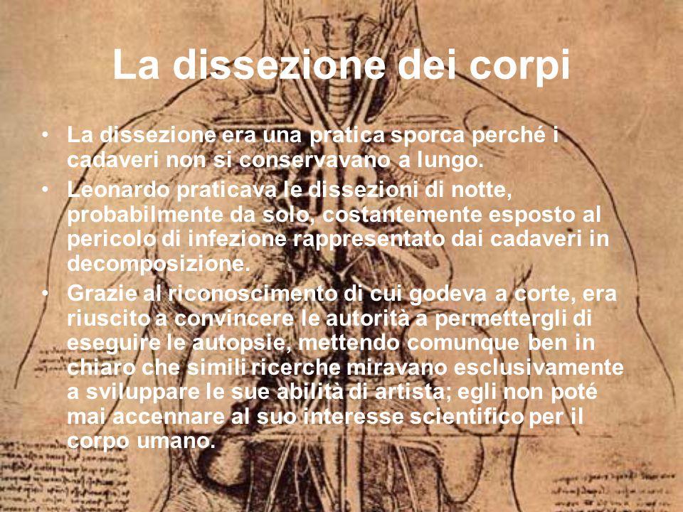 La dissezione dei corpi La dissezione era una pratica sporca perché i cadaveri non si conservavano a lungo.
