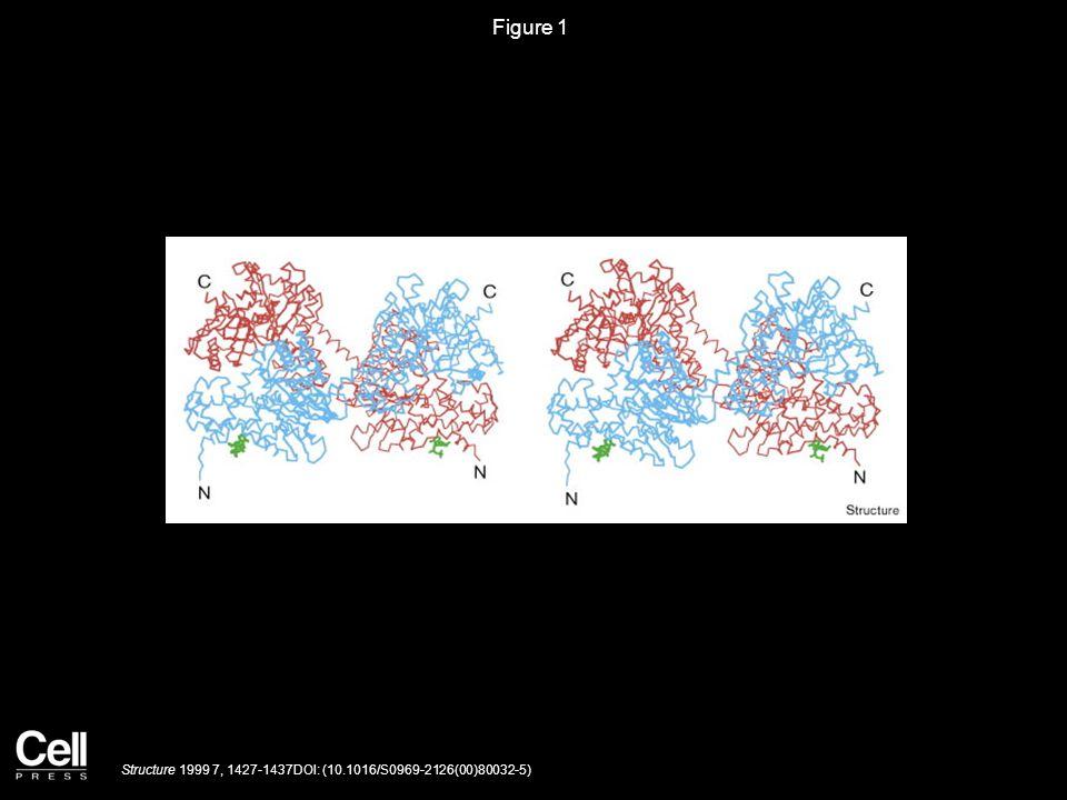 Figure 2 Structure 1999 7, 1427-1437DOI: (10.1016/S0969-2126(00)80032-5)
