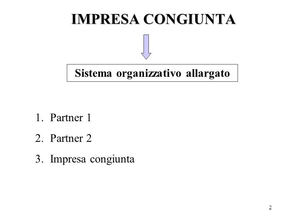 3 Suddivisione formalizzata delle attività, dei profitti e delle conoscenze in un soggetto autonomo Previsione di durata nel tempo della relazione e la necessaria instaurazione di rapporti di fiducia Struttura triadica del sistema di funzionamento dell'impresa congiunta.