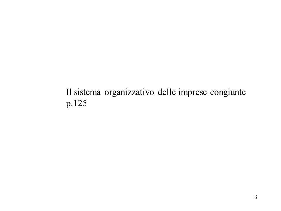 6 Il sistema organizzativo delle imprese congiunte p.125