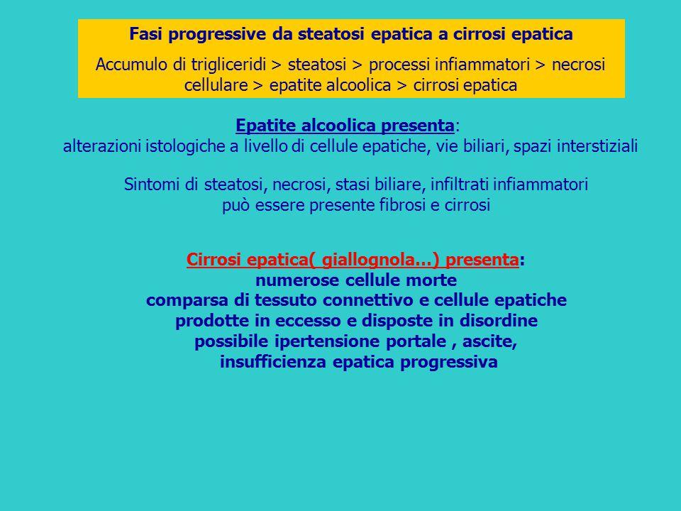 Fasi progressive da steatosi epatica a cirrosi epatica Accumulo di trigliceridi > steatosi > processi infiammatori > necrosi cellulare > epatite alcoo
