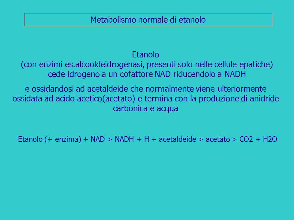 Metabolismo normale di etanolo Etanolo (con enzimi es.alcooldeidrogenasi, presenti solo nelle cellule epatiche) cede idrogeno a un cofattore NAD riduc