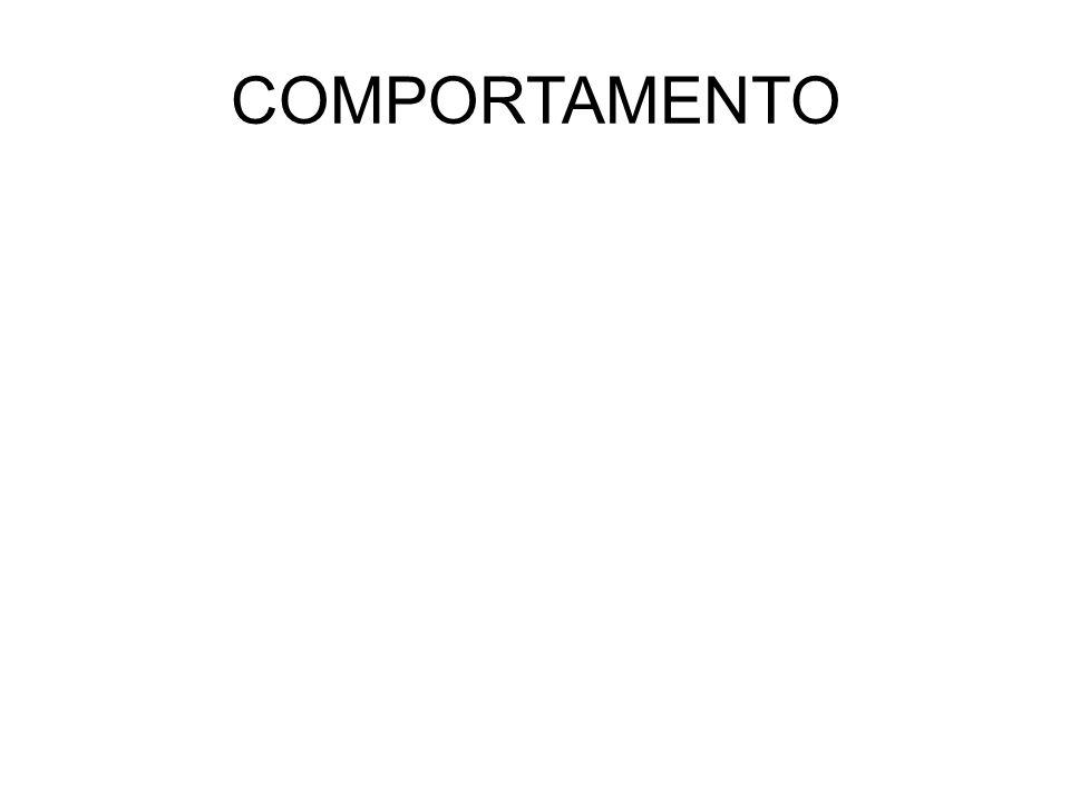 METAMORFOSI COMPLETA