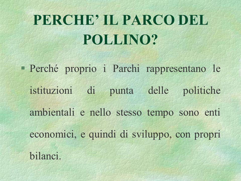 PERCHE' IL PARCO DEL POLLINO.