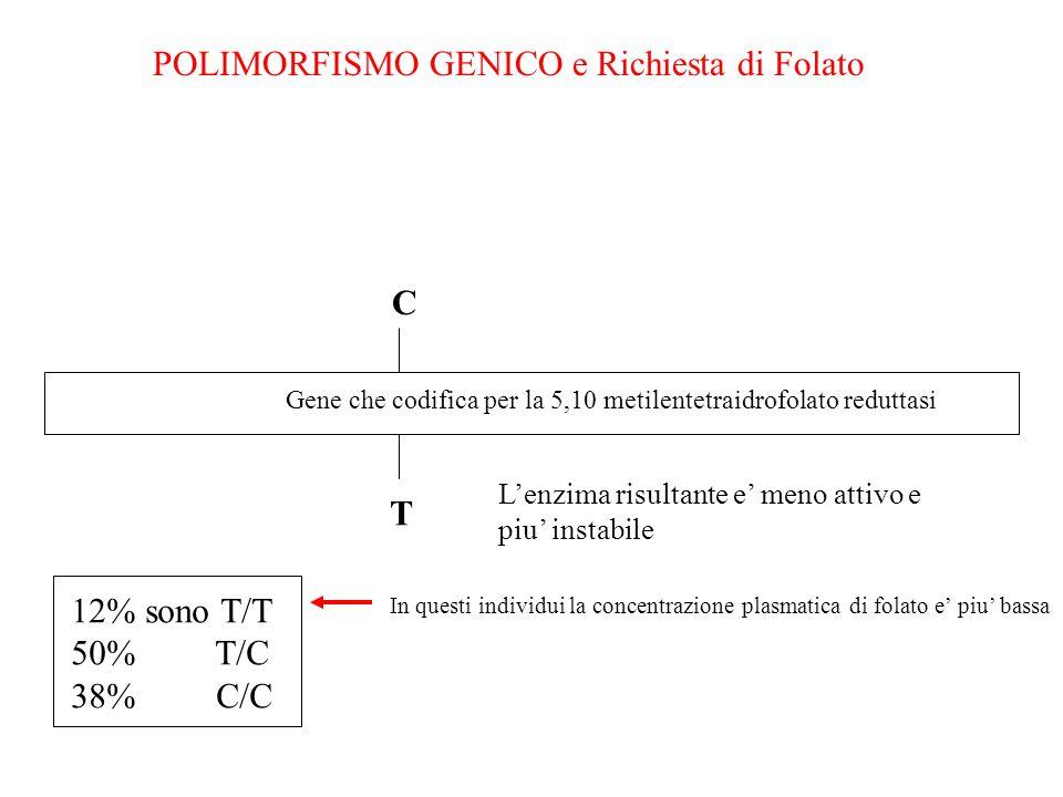 POLIMORFISMO GENICO e Richiesta di Folato Gene che codifica per la 5,10 metilentetraidrofolato reduttasi C T L'enzima risultante e' meno attivo e piu'