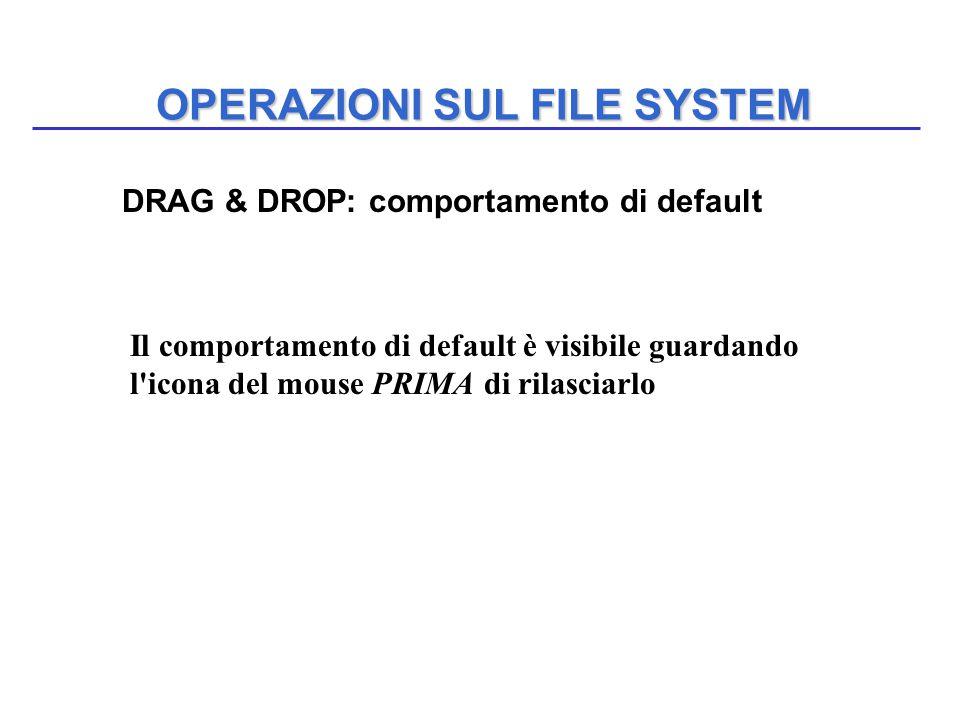 OPERAZIONI SUL FILE SYSTEM DRAG & DROP: comportamento di default Il comportamento di default è visibile guardando l'icona del mouse PRIMA di rilasciar