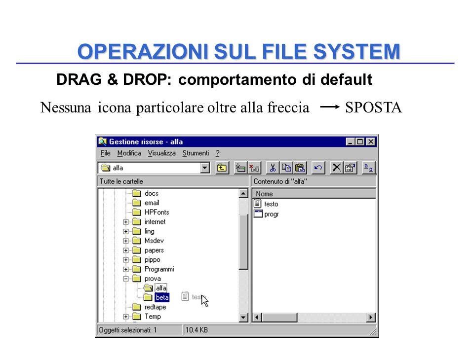 OPERAZIONI SUL FILE SYSTEM DRAG & DROP: comportamento di default Nessuna icona particolare oltre alla freccia SPOSTA