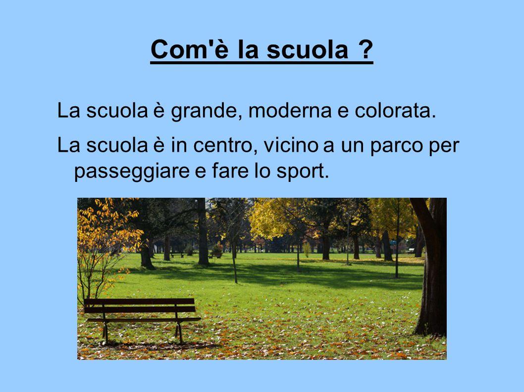 Com'è la scuola ? La scuola è grande, moderna e colorata. La scuola è in centro, vicino a un parco per passeggiare e fare lo sport.