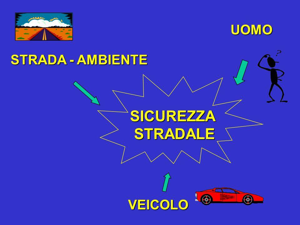 SICUREZZA STRADALE STRADALE UOMO VEICOLO STRADA - AMBIENTE