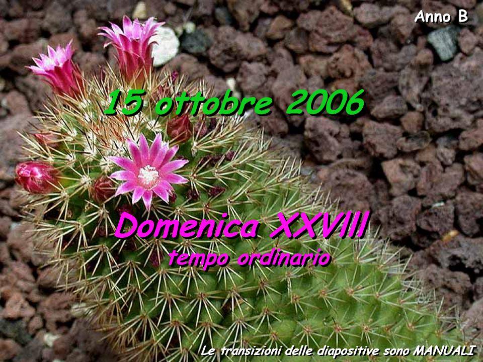 Anno B Le transizioni delle diapositive sono MANUALI 15 ottobre 2006 Domenica XXVlll tempo ordinario Domenica XXVlll tempo ordinario