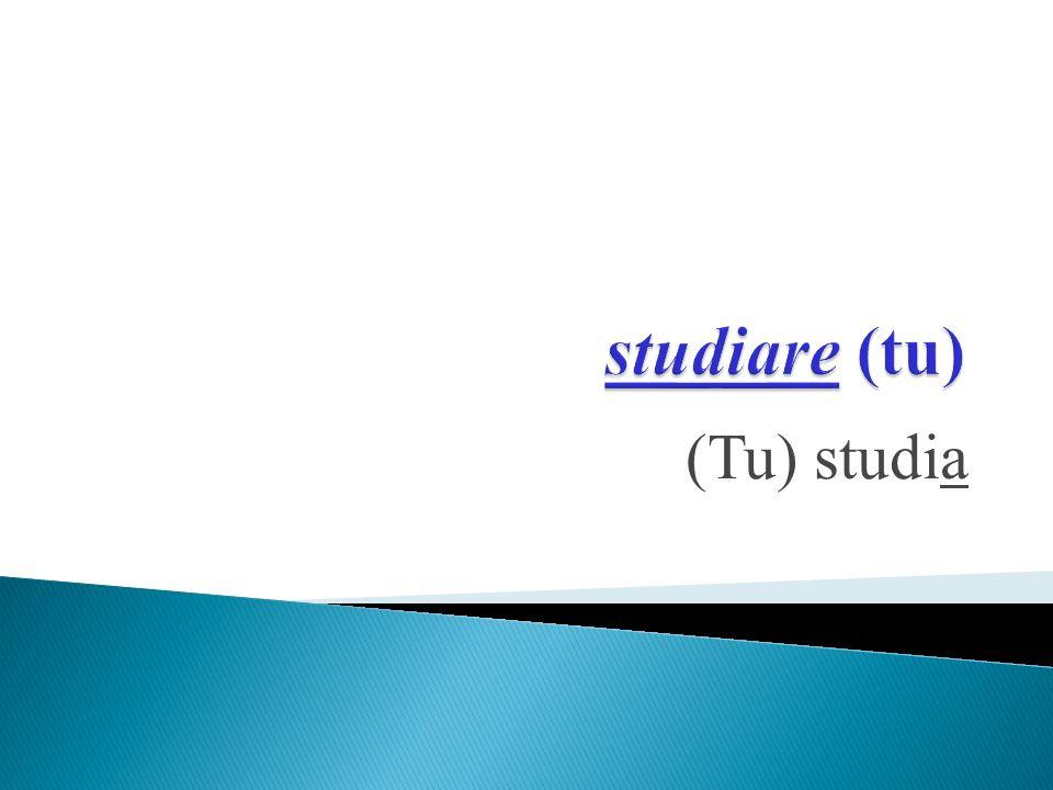 (Tu) studia
