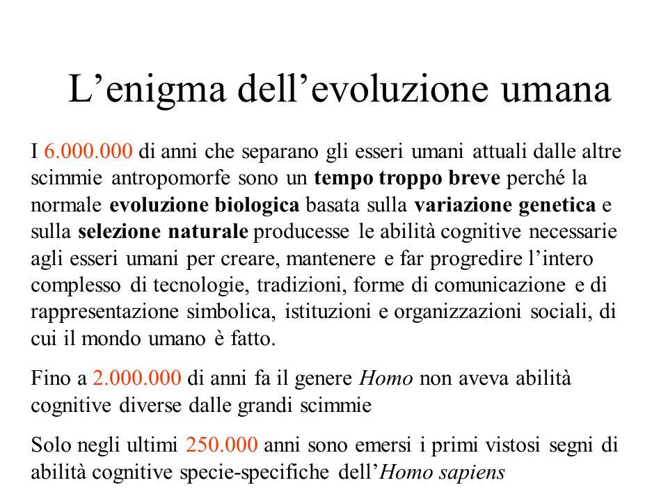 L'enigma dell'evoluzione umana I 6.000.000 di anni che separano gli esseri umani attuali dalle altre scimmie antropomorfe sono un tempo troppo breve p