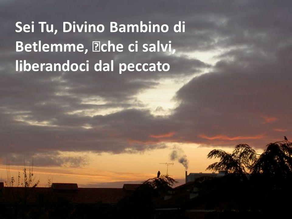 Sei Tu, Divino Bambino di Betlemme, che ci salvi, liberandoci dal peccato