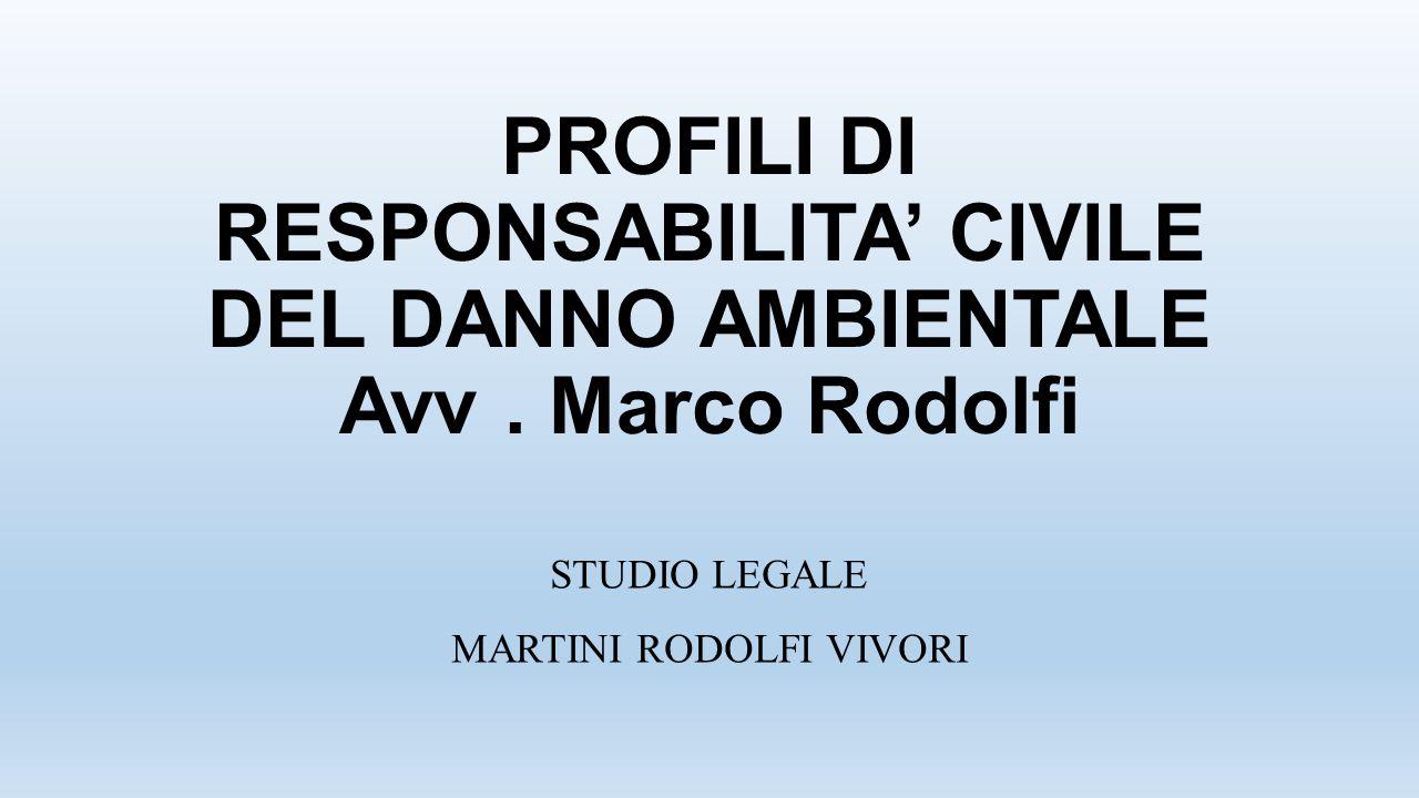PROFILI DI RESPONSABILITA' CIVILE DEL DANNO AMBIENTALE Avv. Marco Rodolfi STUDIO LEGALE MARTINI RODOLFI VIVORI