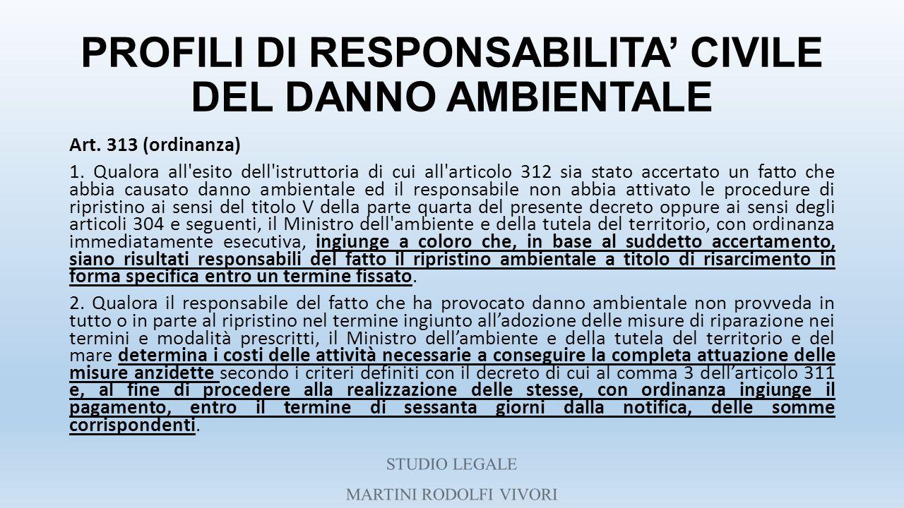 PROFILI DI RESPONSABILITA' CIVILE DEL DANNO AMBIENTALE Art. 313 (ordinanza) 1. Qualora all'esito dell'istruttoria di cui all'articolo 312 sia stato ac