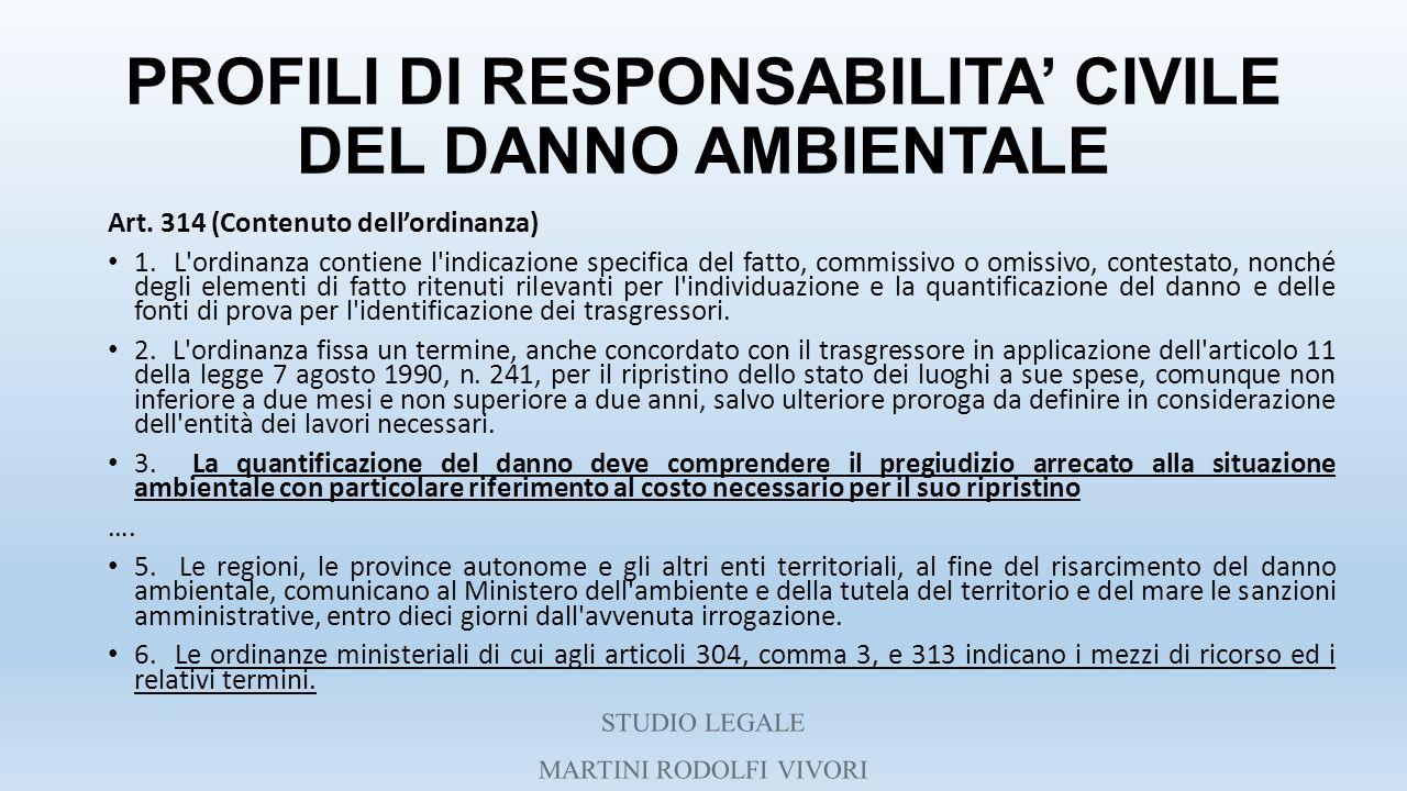 PROFILI DI RESPONSABILITA' CIVILE DEL DANNO AMBIENTALE Art. 314 (Contenuto dell'ordinanza) 1. L'ordinanza contiene l'indicazione specifica del fatto,