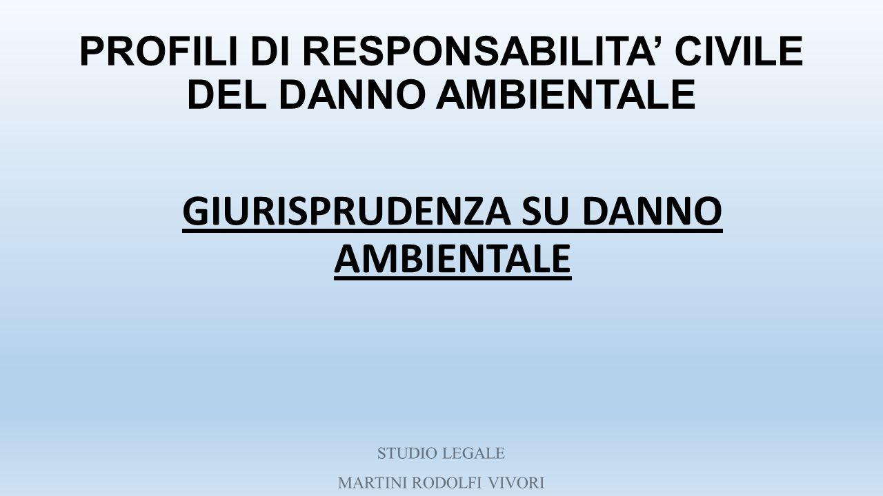 PROFILI DI RESPONSABILITA' CIVILE DEL DANNO AMBIENTALE GIURISPRUDENZA SU DANNO AMBIENTALE STUDIO LEGALE MARTINI RODOLFI VIVORI