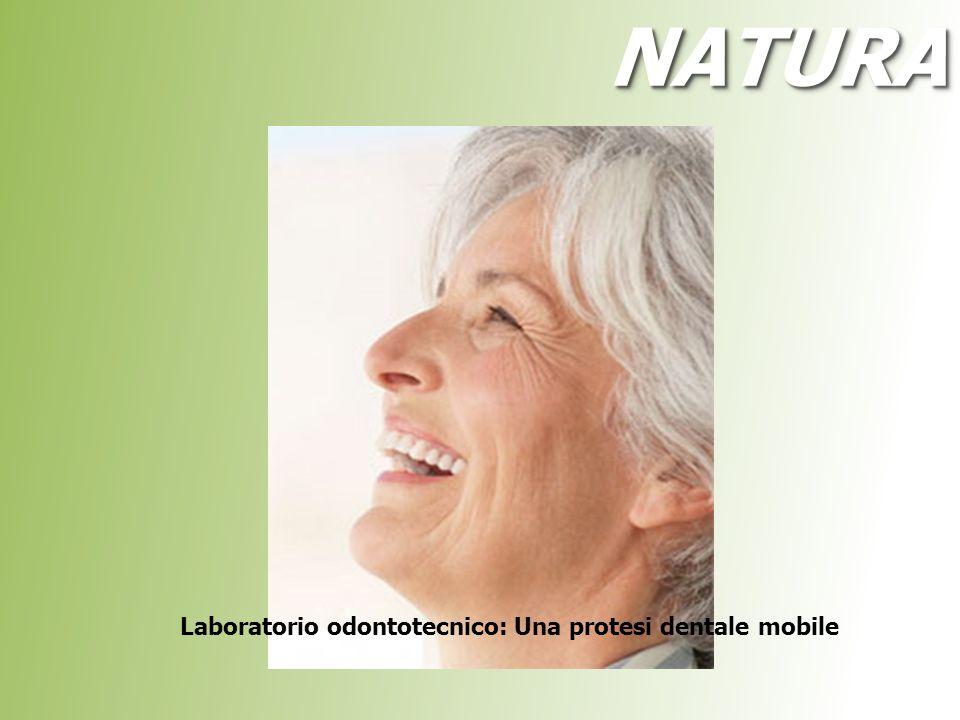 Laboratorio odontotecnico: Una protesi dentale mobile NATURANATURA