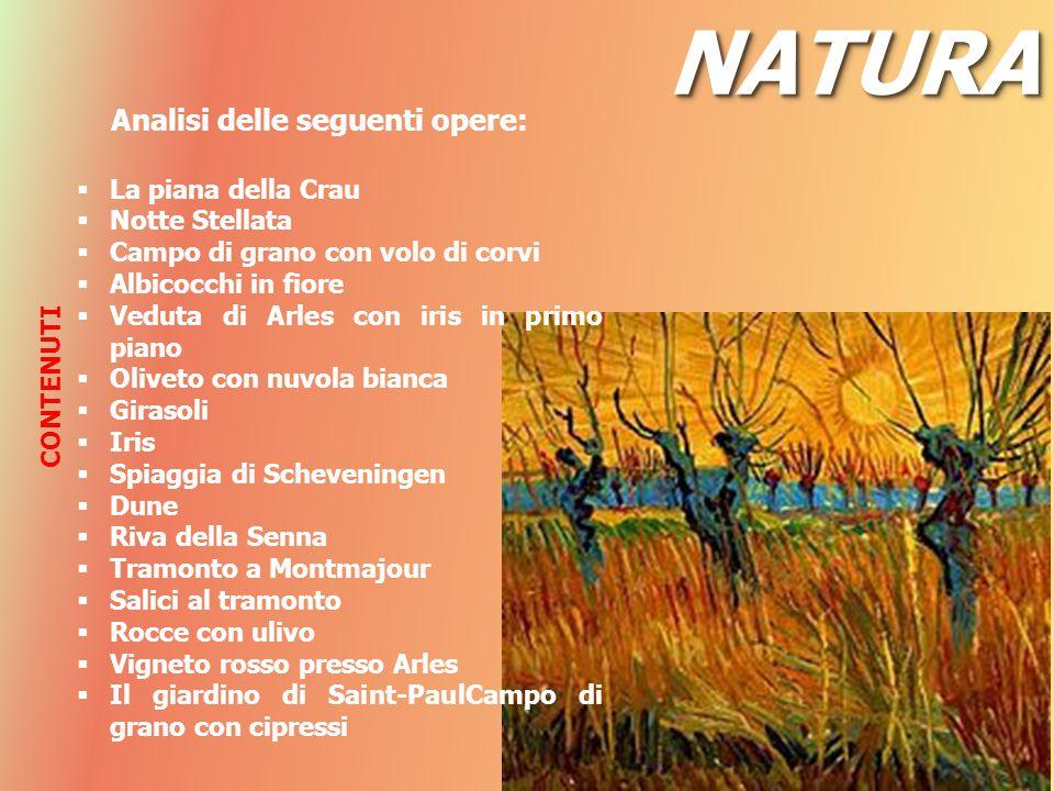 NATURANATURA Analisi delle seguenti opere:  La piana della Crau  Notte Stellata  Campo di grano con volo di corvi  Albicocchi in fiore  Veduta di